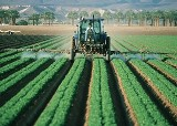 Open-a-Company-in-Agriculture-in-Spain.jpg